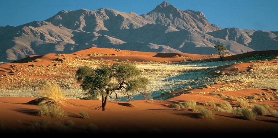 podroż poślubna namibia