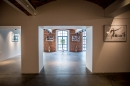 Galeria Piękno - Przestrzeń do wynajęcia